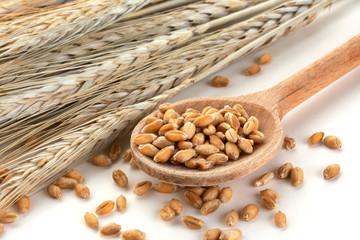 Wheat in a wooden spoon