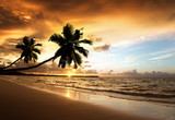 Fototapety sunset on the beach of caribbean sea