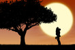 Couple hugging by a tree on orange silhouette sunset