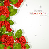 Valentine`s day card with red roses with a field for your text