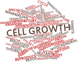 Word cloud for Cell growth