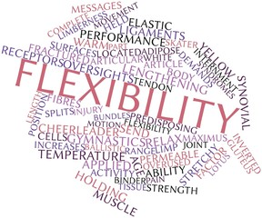 Word cloud for Flexibility