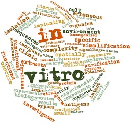 Word cloud for In vitro
