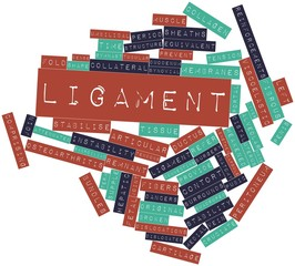 Word cloud for Ligament