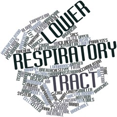 Word cloud for Lower respiratory tract