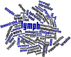 Word cloud for Lymph