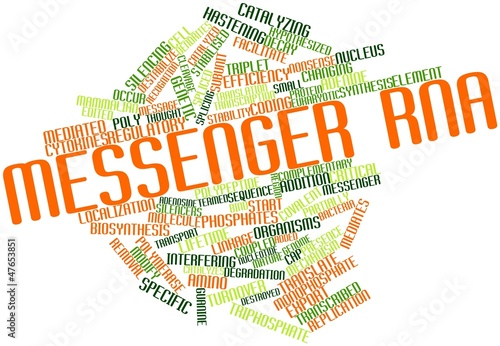 Word cloud for Messenger RNA