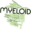 Word cloud for Myeloid