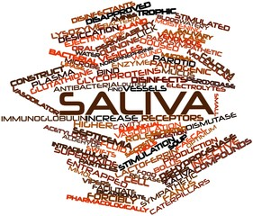 Word cloud for Saliva