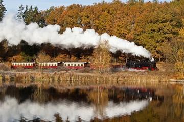Harzer Schmalspurbahnen im Herbst / Selketalbahn