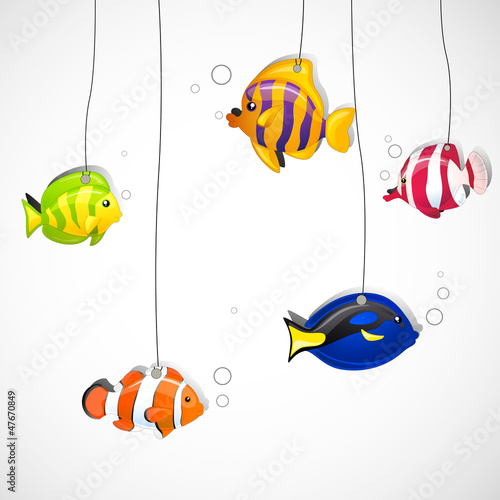Vector Illustration of Colorful Ornamental Fishes