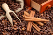 coffee beans, wooden scoop, cinnamon sticks and hand grinder