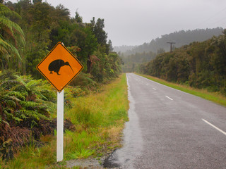 Kiwi Crossing Sign in Rain