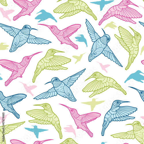 Colorful hummingbirds vector seamless pattern background with