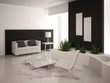 Modern Black & White Luxury Living Room Interior