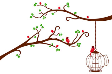 Two Tree Branches with bird cage and love birds