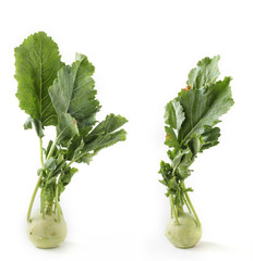 Two fresh ripe organic kohlrabi vegetable on white background al