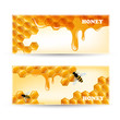 Vector Illustration of Two Honey Banners