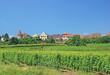 der Wein-und Touristenort Zellenberg im Elsass