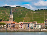 Vineyards in the Cote du Rhone France