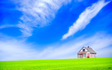 house in the green field