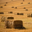 Straw bales background