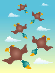 Illustration of ducks flying