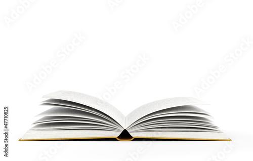 open book - 47710825
