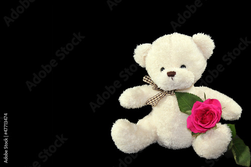 teddy bear with flower isolated on black background