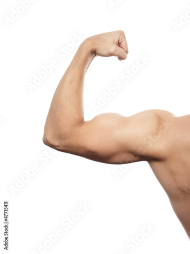 Arm Muskeln