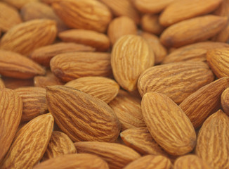 close up of unshelled almonds