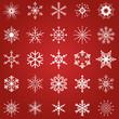 25 Schneeflocken