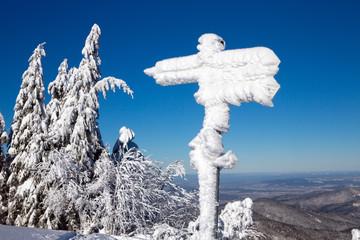 Winter, Schnee, Frost, Baum,  Berg, Schild