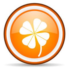 four-leaf clover orange glossy icon on white background