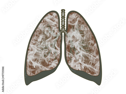 Lungs filled with smoke on white background