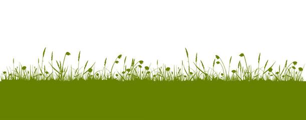 grüne Wiese Panorama