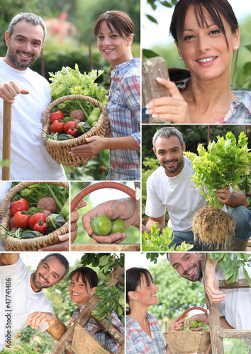 Montage of a couple picking produce