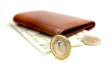 Para, Cüzdan, Bozuk Para