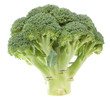 Vegetable broccoli on a white background. Close-up.