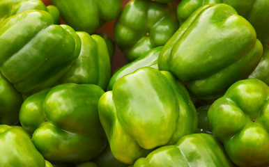 Green Bell Pepper Pile