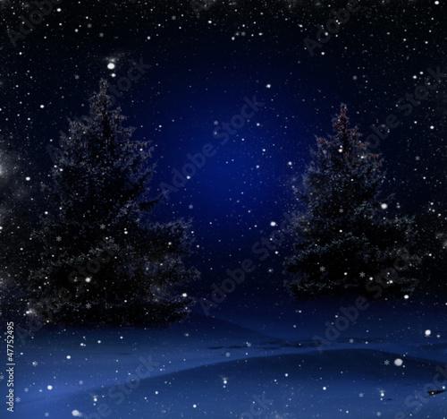Fototapeten,baum,nacht,wald,winter