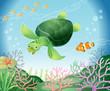 海亀とお友達