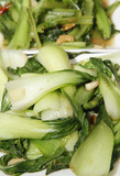 bok choy pak choi chinese vegetable