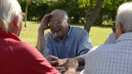 Old people, group of senior men having fun and laughing in park