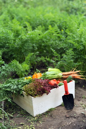 Crop in a crate