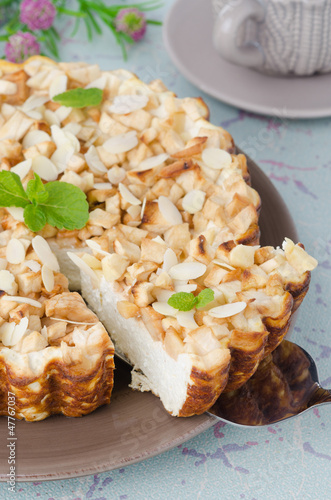 Cottage cheese pie with apples and cut piece