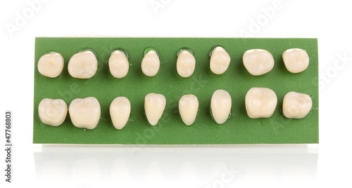 Teeth set isolated on white