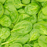 Fresh Organic Baby Spinach background or texture. Raw food. poster