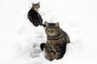 Mutter und Tochter im Schnee