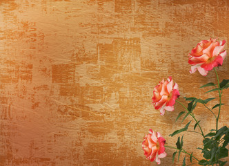 Grunge background for congratulation with beautiful rose